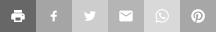Greyed out social media logos